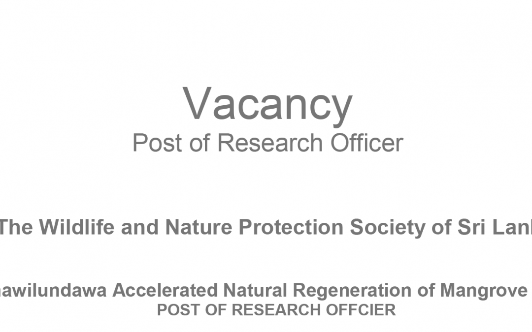 Vacancy-Post of Research Officer